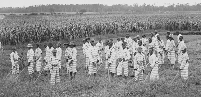Child convicts at work in the fields.